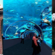 V&A Waterfront, Cape Town Aquarium, and Cape Town Diamond Museum