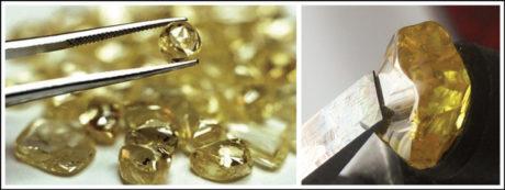 T.J. Richardson of Greenwood, Arizona stumbled upon a 3 pt. yellow diamond on 25 September.