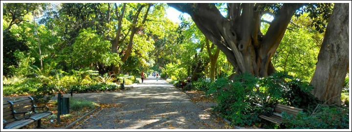 Enjoy a relaxing picnic in the park while in the middle of Cape Town.