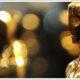 Oscar Diamond Jewellery